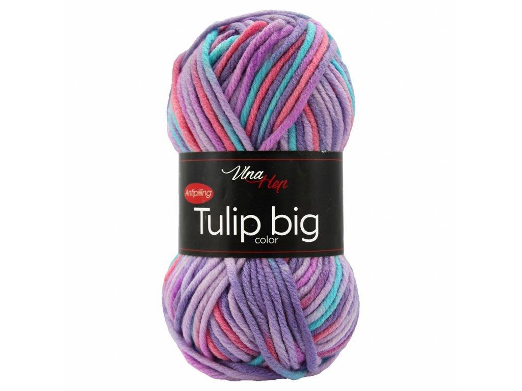 Tulip BIG color 5606 fialová