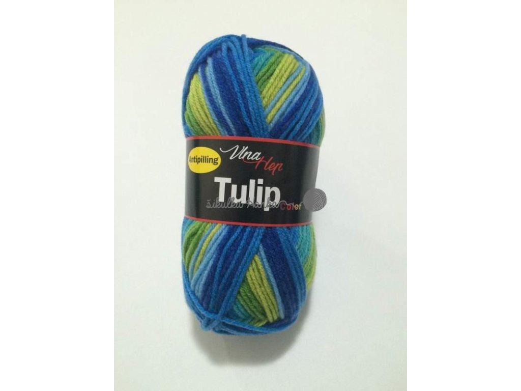 Tulip color 5202 modro-žlutá