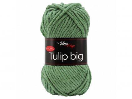 Tulip big 4135 brčálová