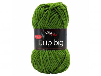 Tulip big 4456 zelená