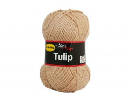 587 41 tulip