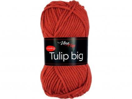 Tulip big 4238 rezavá