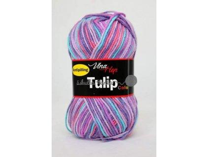 Tulip color 5606 fialovo-barevná