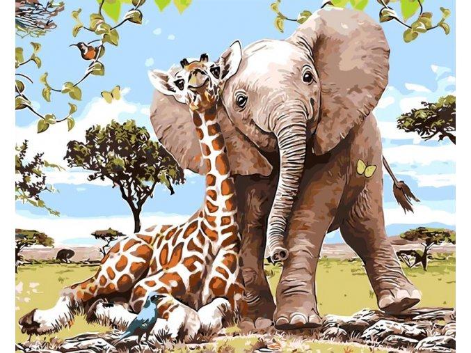 Žirafa a slůně