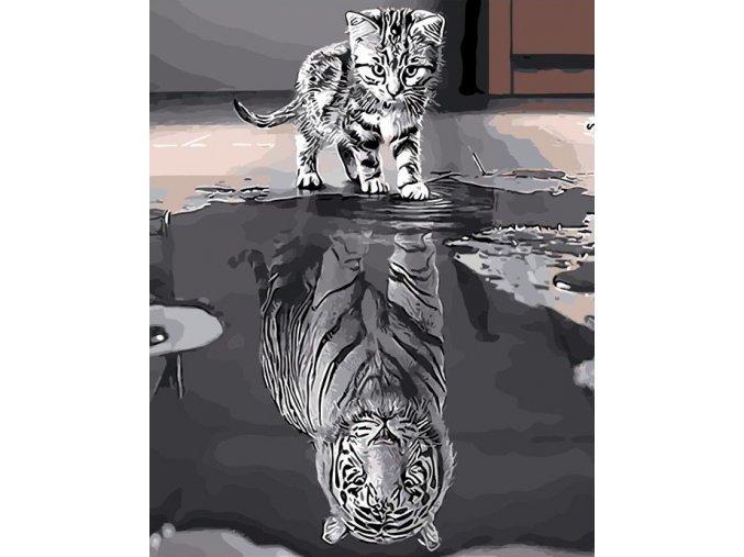 Malý tygr