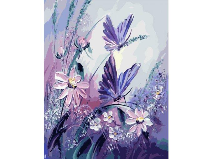 Fialoví motýli