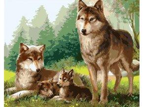 Vlčí rodinka