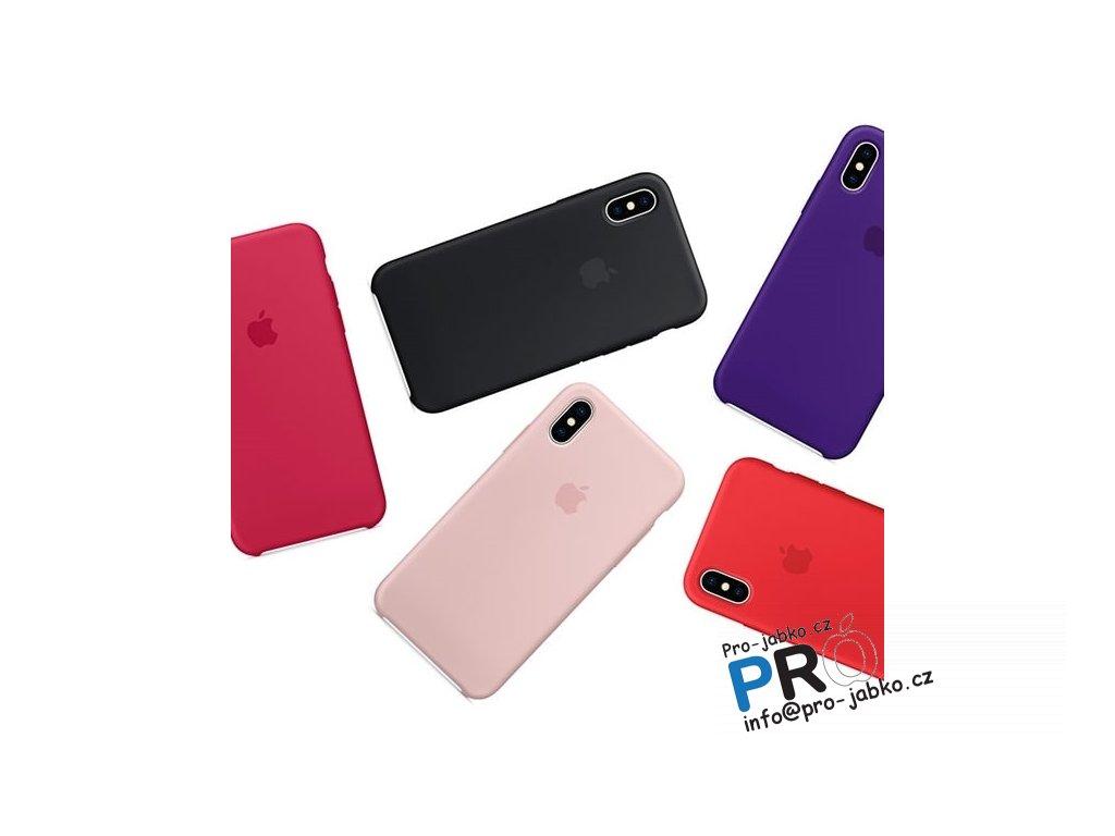 silicone iX21 min