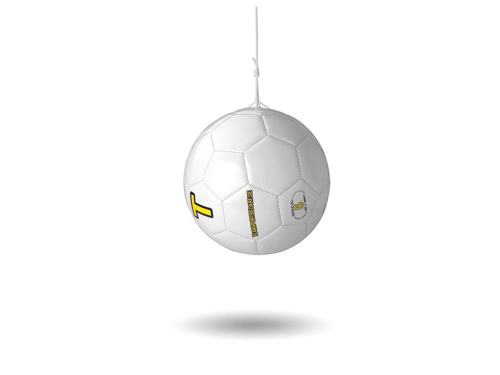 Závesná lopta