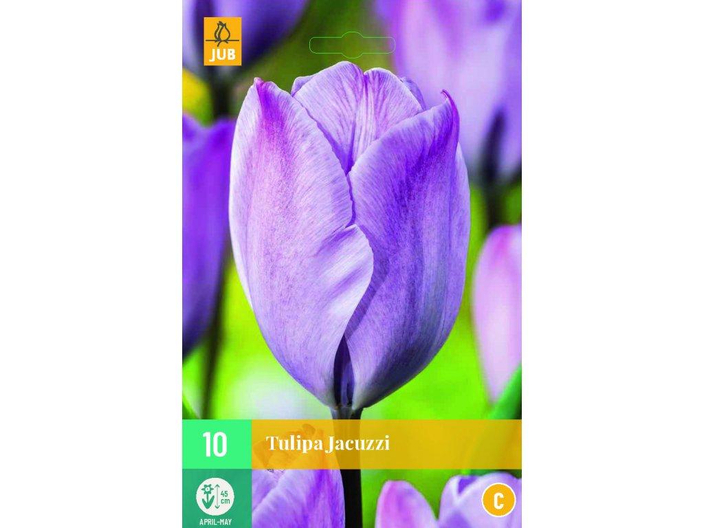 tulipán jacuzzi