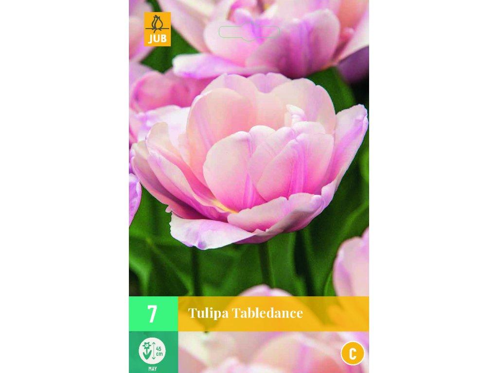 tulipán tabledance