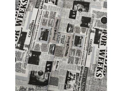 Plátno - Noviny š. 145