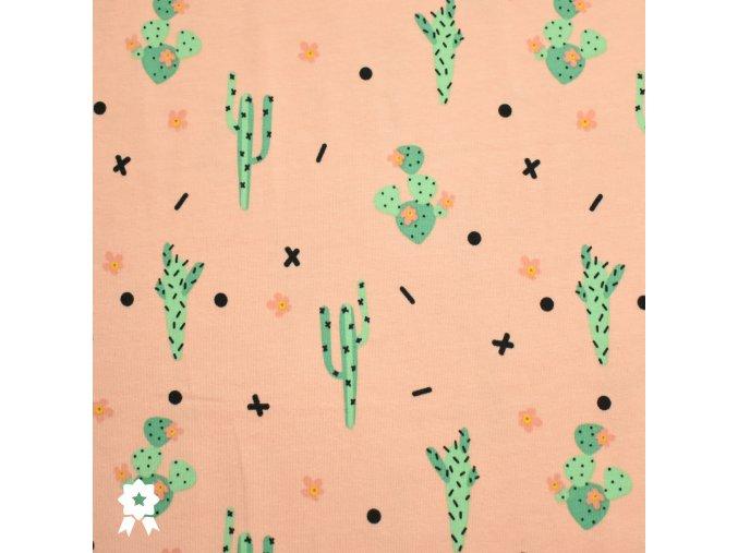 781 Kaktusy na meruňkové