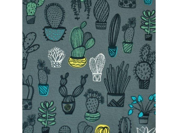 1364 Úplet Kaktusy na šedé