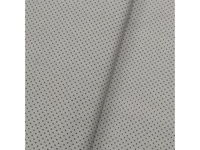 Plátno - Puntíky na šedé