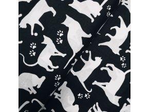 Plátno - Kočičky na černé