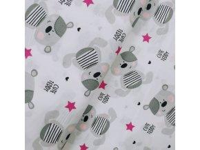 Plátno - Medvídek, růžovo-šedý