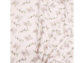 Úplet - Eukalyptus a kapradí