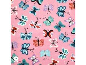 981 Motýlci na růžové