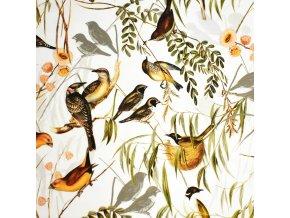 1141 Ptáčci v křoví