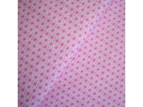 1251 Růžové paprsky plátno