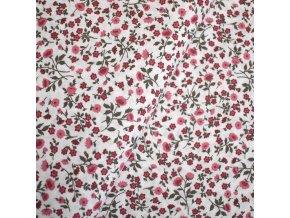 1440 Plátno Růžičky