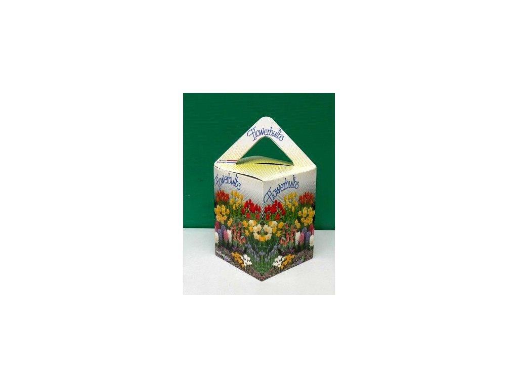Jarní truhlík - kolekce cibulovin (25 ks)  Kolekce cibulovin pro jarní truhlík