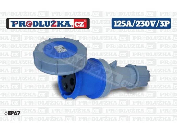 S 125A 230V 3P IP67