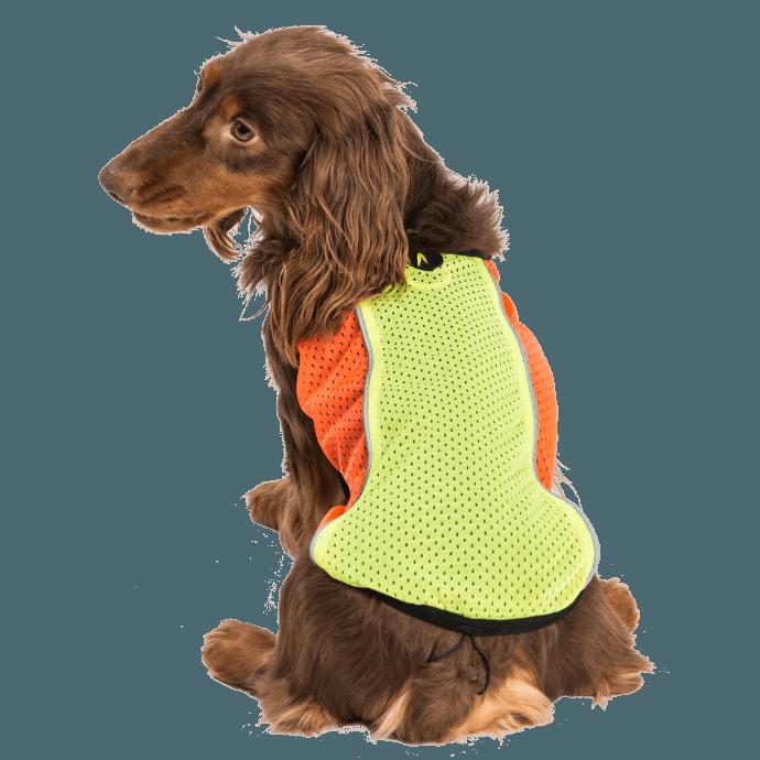 Reflexní vesty pro psy