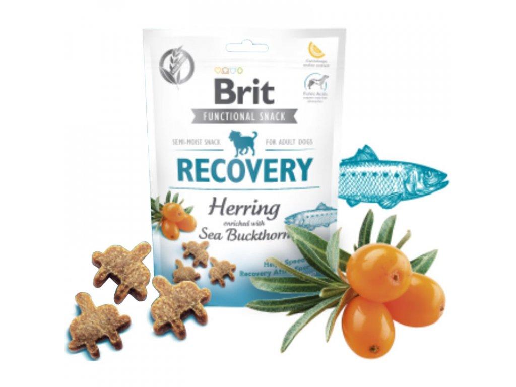 Brit Care Dog Functional Snack Recovery Herring 150g  Lahodné a výživové masové pamlsky pro psy
