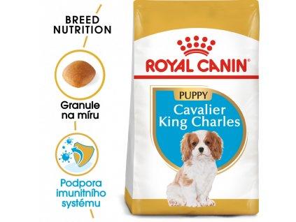 ROYAL CANIN Cavalier King Charles Puppy 1,5 kg  granule pro štěně kavalír king charles španěl
