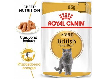 ROYAL CANINBritish Shorthair Gravy 12 X 85 G  British Shorthair Gravy kapsička pro britské krátkosrsté kočky ve šťávě