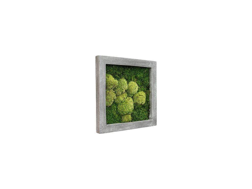 Mechový obraz Polystone raw grey 50x50 cm