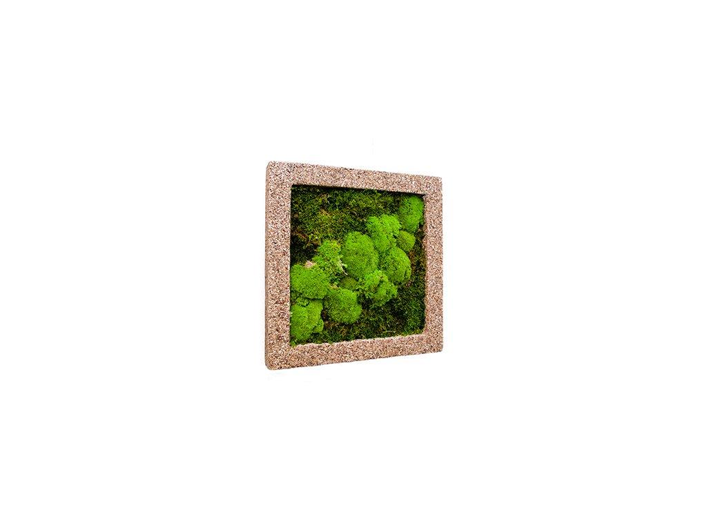 Mechový obraz Polystone nature cast 50x50 cm