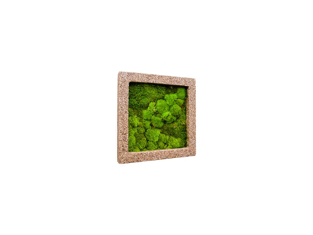 Mechový obraz Polystone nature cast 70x70 cm