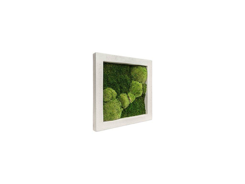 Mechový obraz Polystone natural 50x50 cm