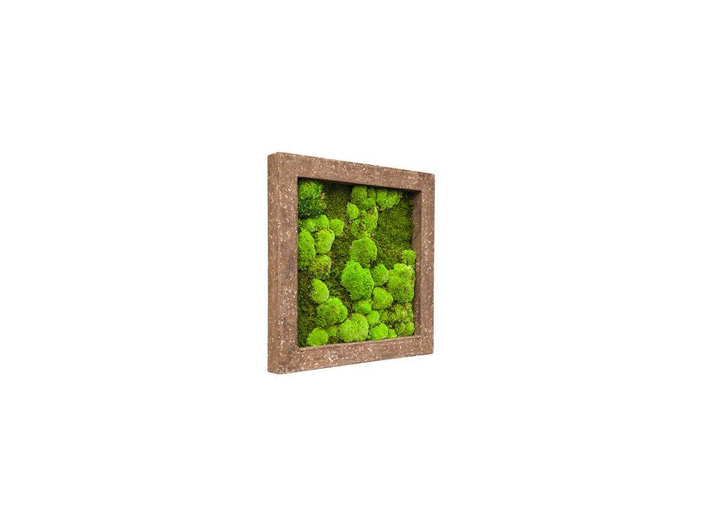 Mechový obraz Polystone rock 70x70 cm