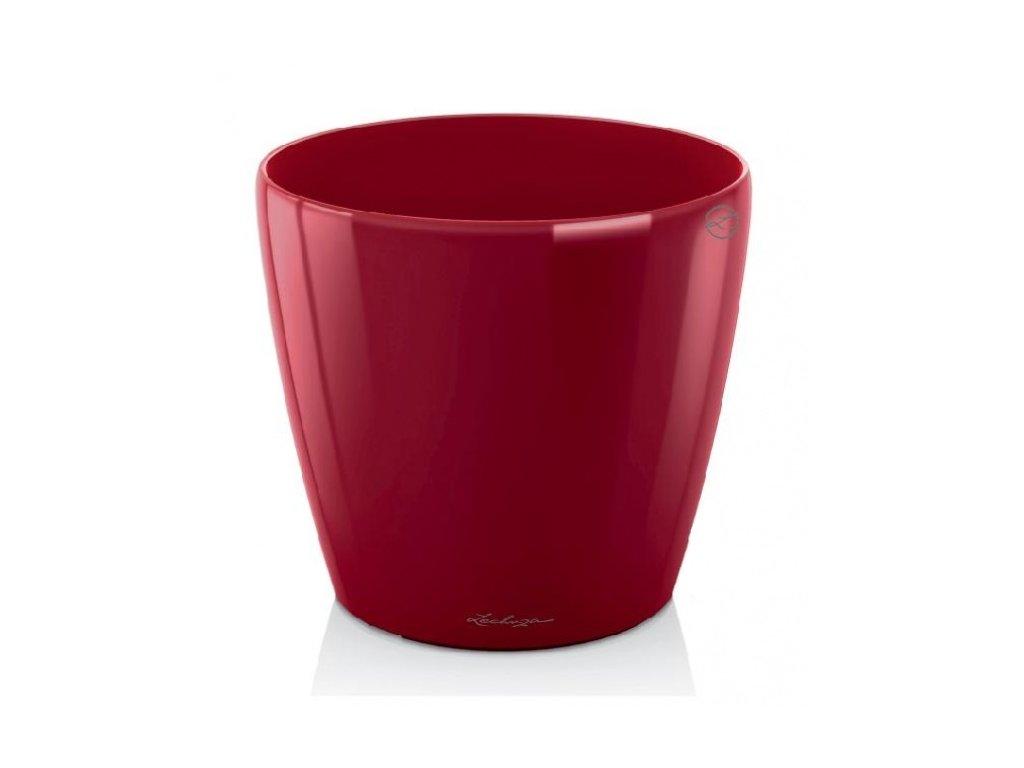 Lechuza classico LS 21 - scarlet