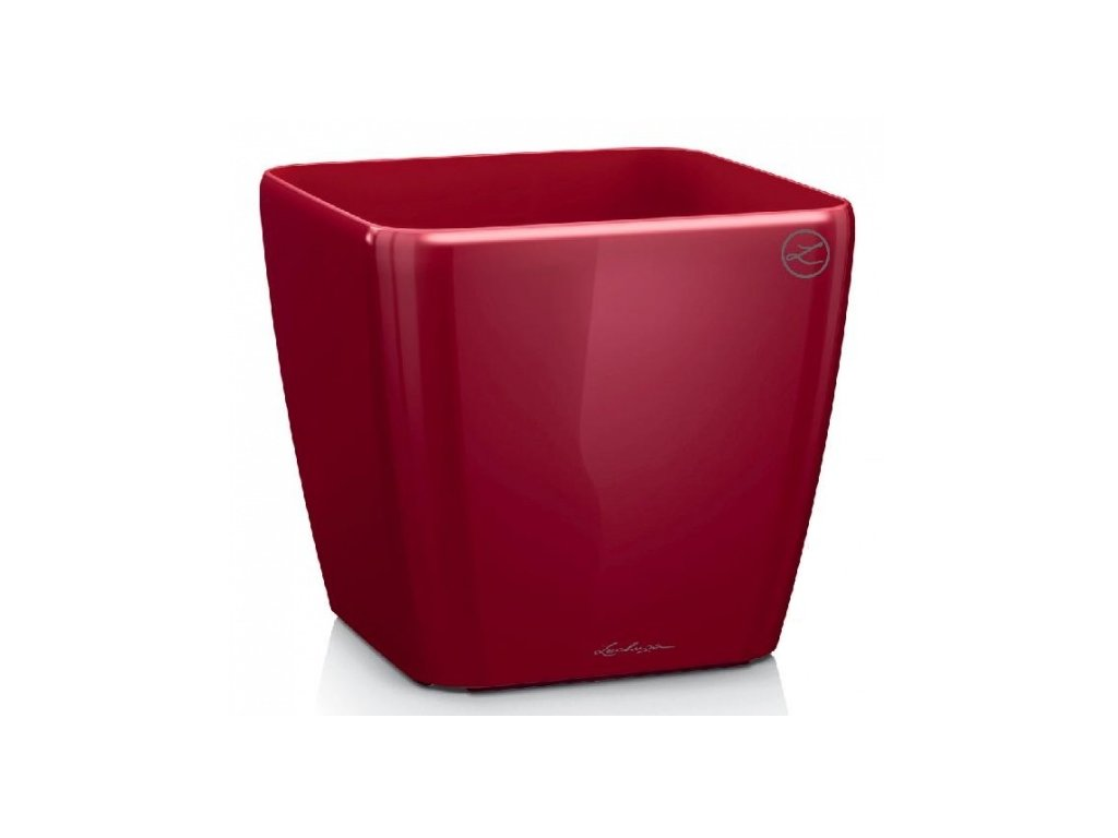 Lechuza Quadro LS 50 - scarlet