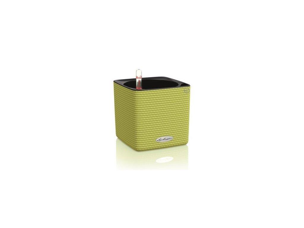 Lechuza Cube Color 16 - limetková