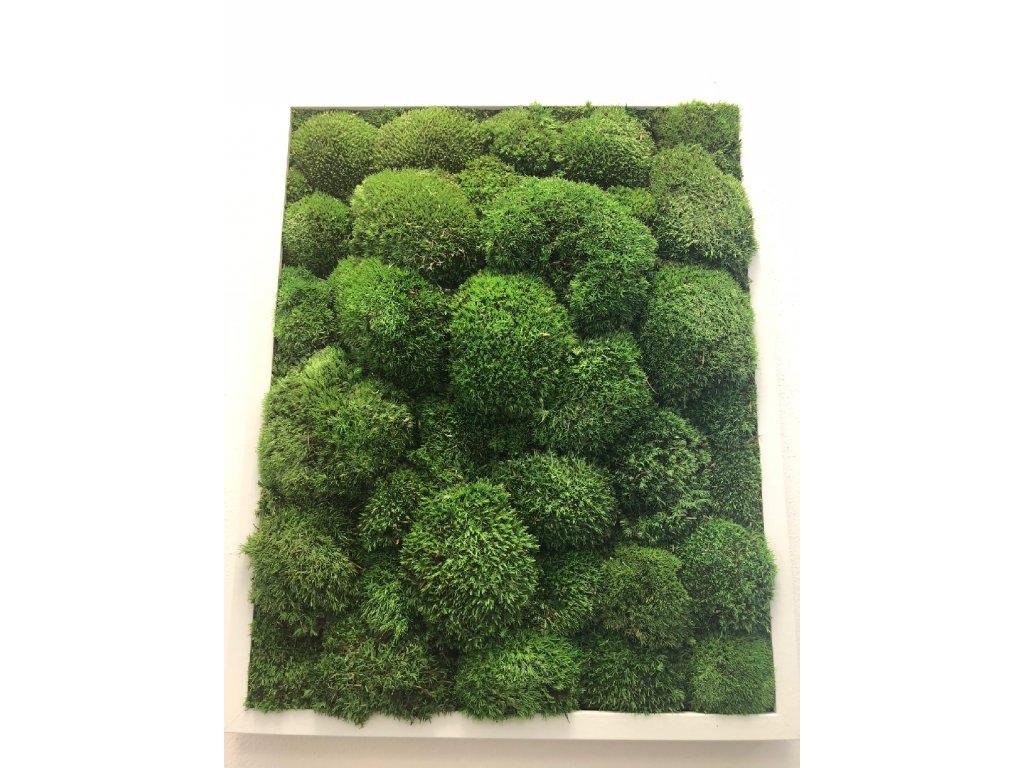 Mechový obraz 30x40 cm - bochánky