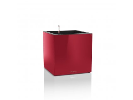 Lechuza canto premium square 40 - scarlet