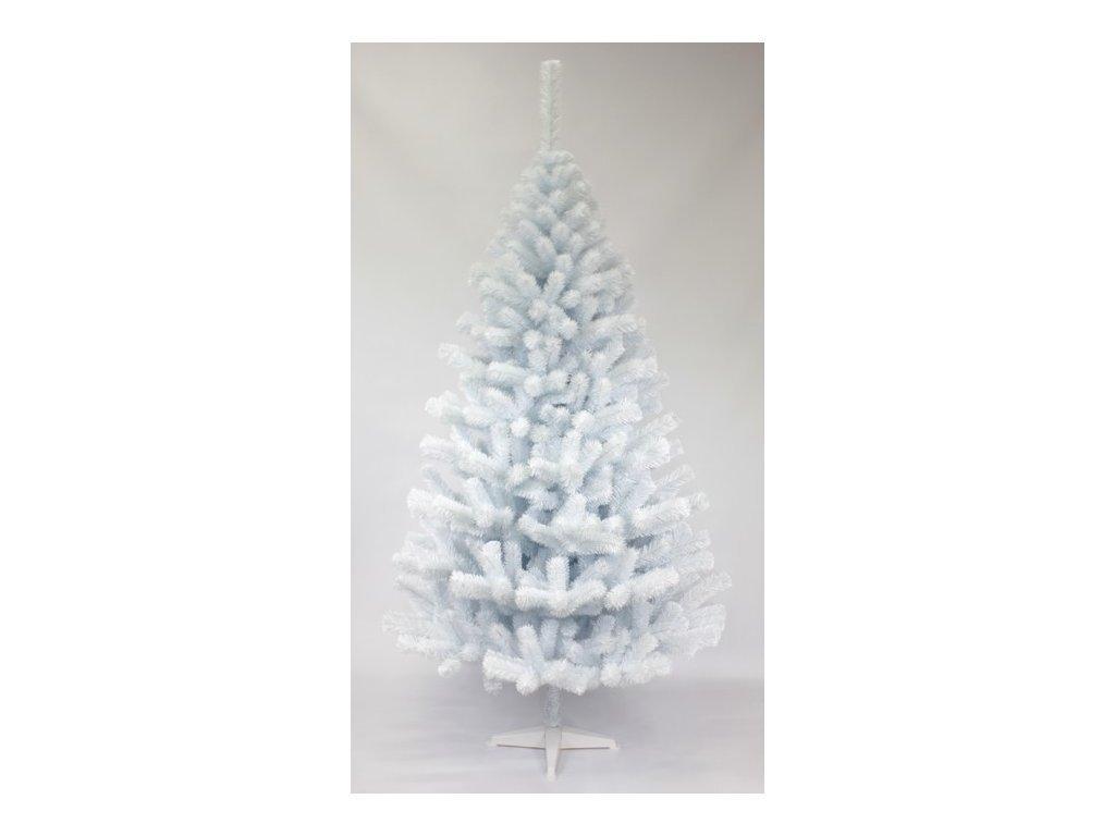 Jedlička biela 220 cm