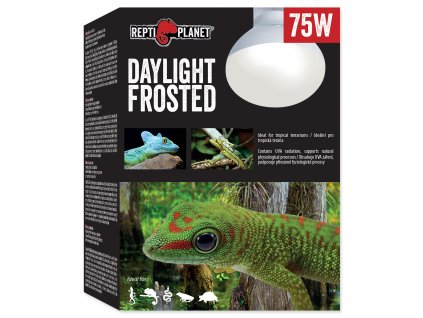 Žárovka REPTI PLANET Daylight Frosted 75W