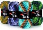 Tulip color ( VH )