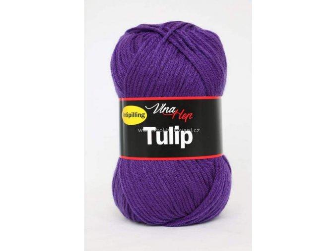 Tulip 4059 fialova