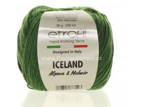 příze Iceland 70419 zelená