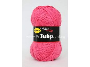 Tulip 4047 malina