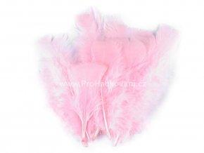 peříčka 11-17 cm Světle růžová