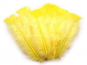 peříčka 11-17 cm Ostrá žlutá